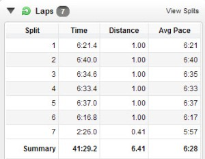 See what having the GPS show longer than the race distance does to the average pace!